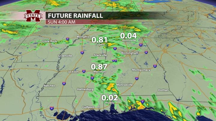 Rainfall - 12 Hours