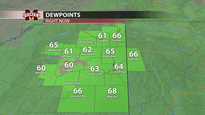 Local Dewpoints